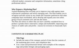 007 Formidable Marketing Busines Plan Format Picture  Template For Small Free