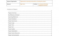 007 Frightening Project Report Template Word Sample  Statu Free Download 2013