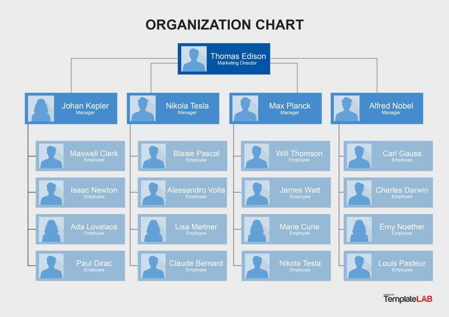 007 Imposing Hierarchy Organizational Chart Template Word Design  Hierarchical Organization -Full