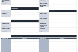 007 Impressive Strategic Busines Plan Template Highest Quality  Development Word Sample