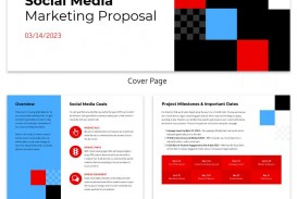 007 Incredible Social Media Proposal Template Example  Plan Sample Pdf 2018