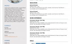 007 Marvelou Professional Cv Template 2019 Free Download Design