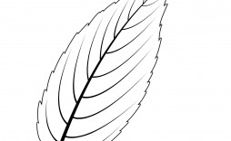 007 Phenomenal Leaf Template With Line Concept  Lines Writing Printable