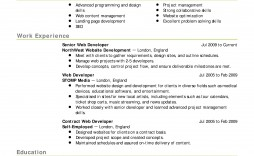 007 Rare Resume Template For Wordpad Picture  Free Cv Download