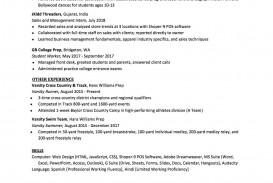007 Sensational High School Student Resume Template Design  Free Google Doc