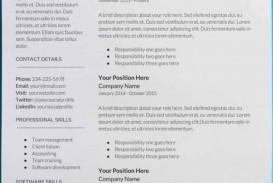 007 Sensational Professional Cv Template Free Online Photo  Resume
