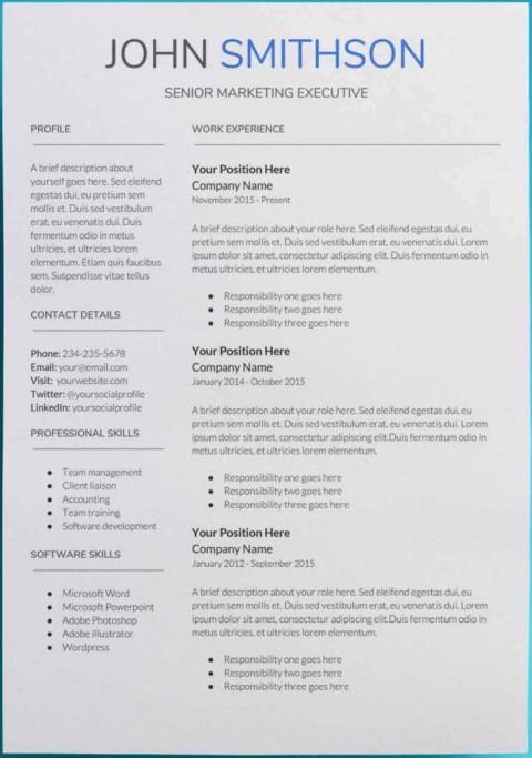 007 Sensational Professional Cv Template Free Online Photo  Resume480