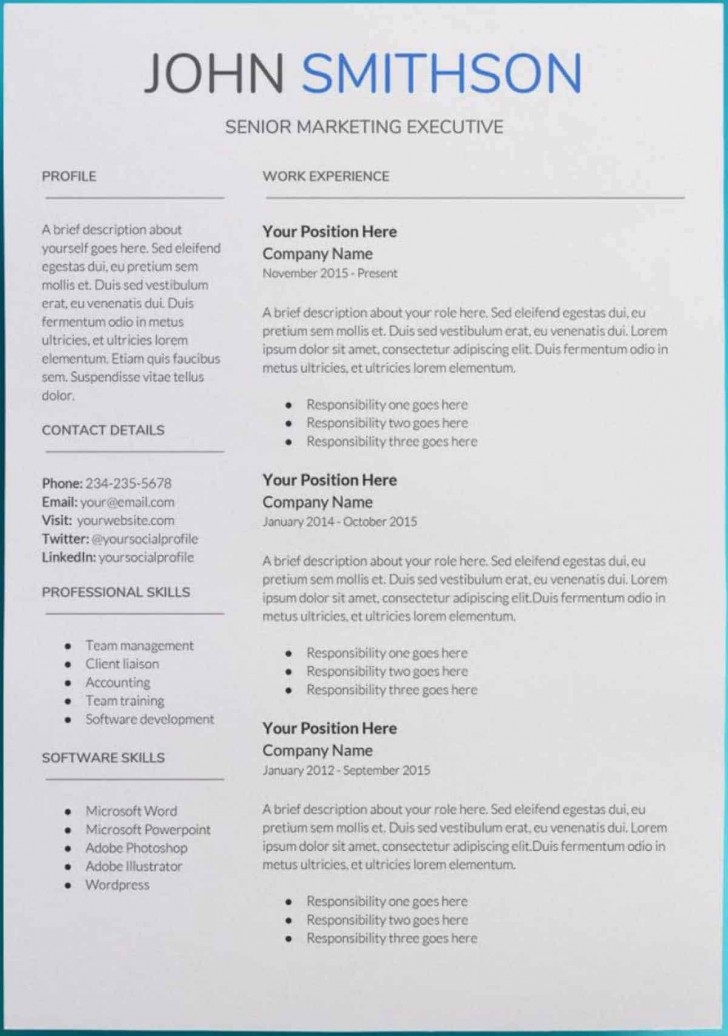 007 Sensational Professional Cv Template Free Online Photo  Resume728