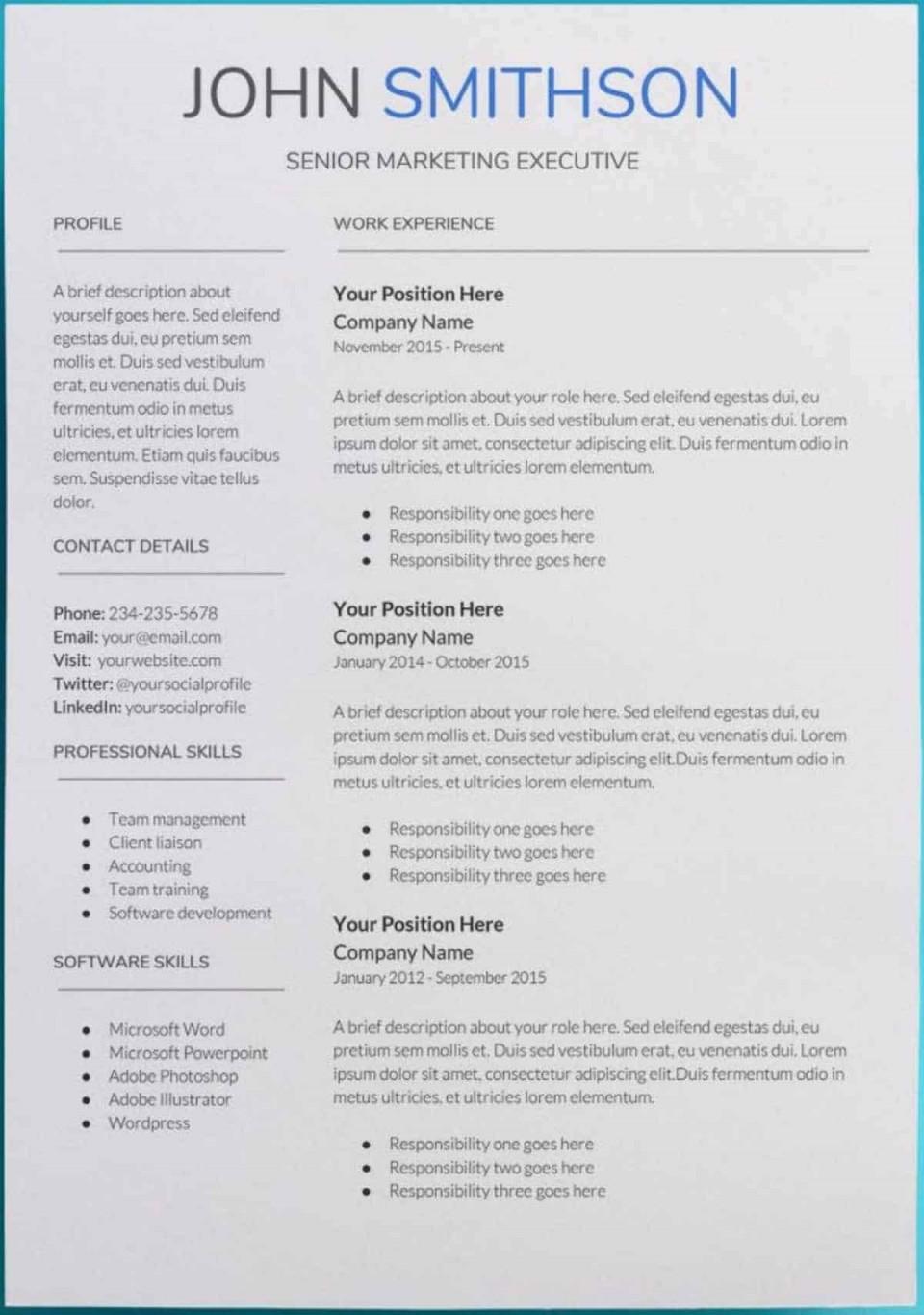 007 Sensational Professional Cv Template Free Online Photo  Resume960