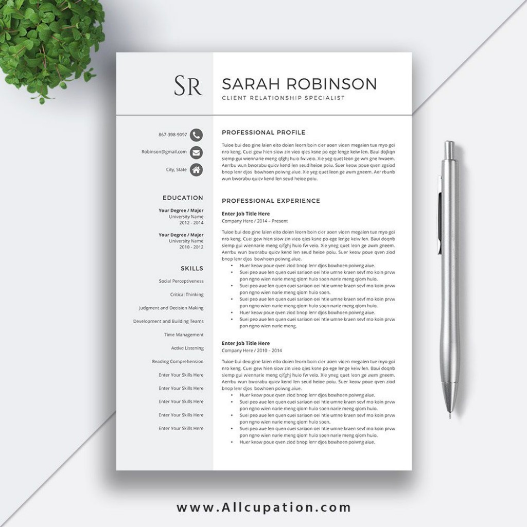 007 Sensational Simple Professional Cv Template Word High Def Large
