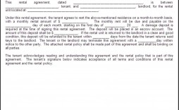 007 Shocking Apartment Rental Agreement Form High Def  Forms Lease Ontario Format Simple