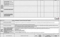 007 Singular Corrective Action Plan Template Example  Free Employee Word Excel Healthcare