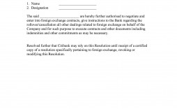 007 Singular Resolution Template Microsoft Word High Def  Corporate Board South Africa Free