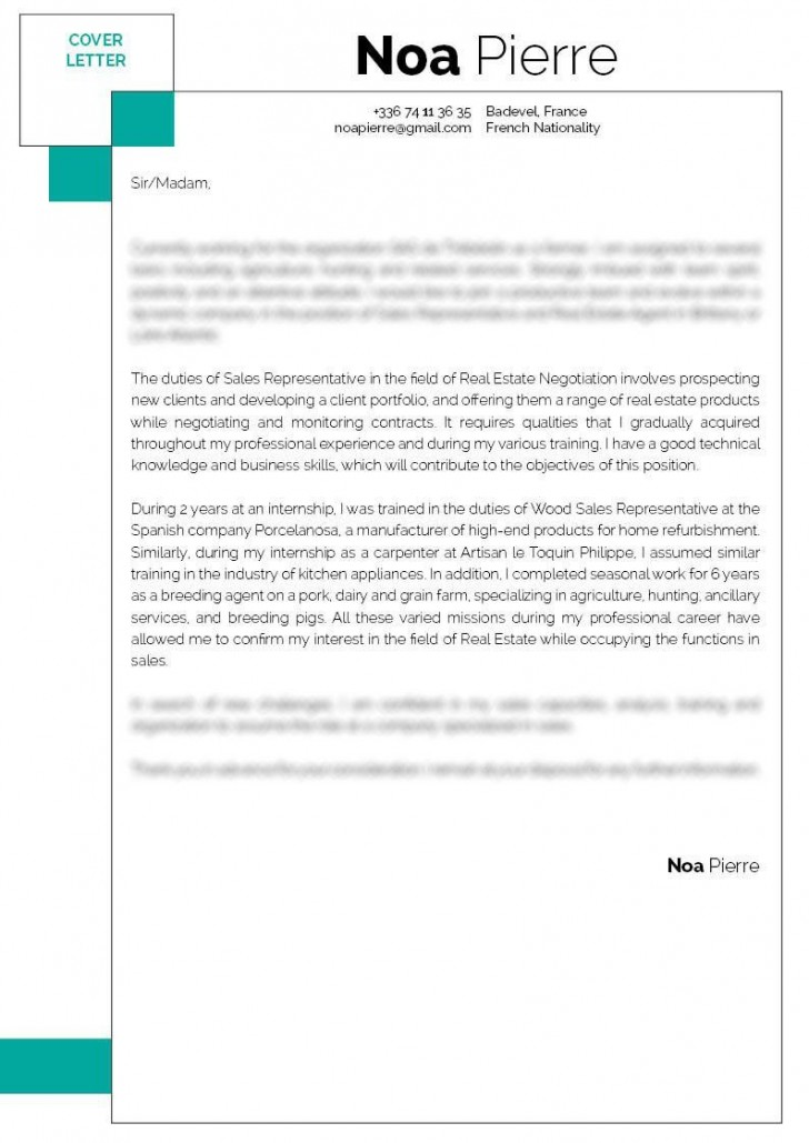 007 Singular Sale Cover Letter Template High Definition  Account Manager Word Rep728