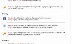 007 Singular Social Media Plan Sample Design  Marketing Template Pdf Strategy Content