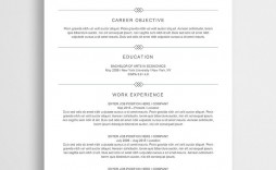 007 Stirring Entry Level Resume Template Word Example  Free For