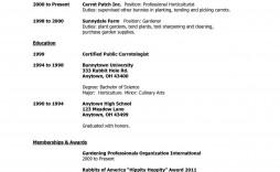 007 Stirring Free High School Resume Template Word Sample  Student