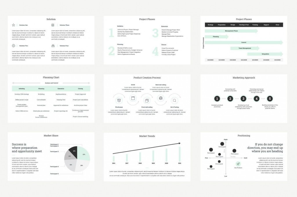 007 Striking Project Management Report Template Ppt High Def  Weekly StatuLarge