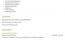 007 Striking Rn Graduate Resume Template High Resolution  New Nurse Practitioner