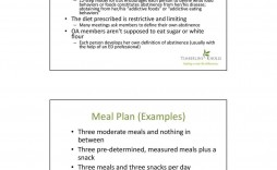 007 Stupendou Anorexia Recovery Meal Plan Example Pdf Image