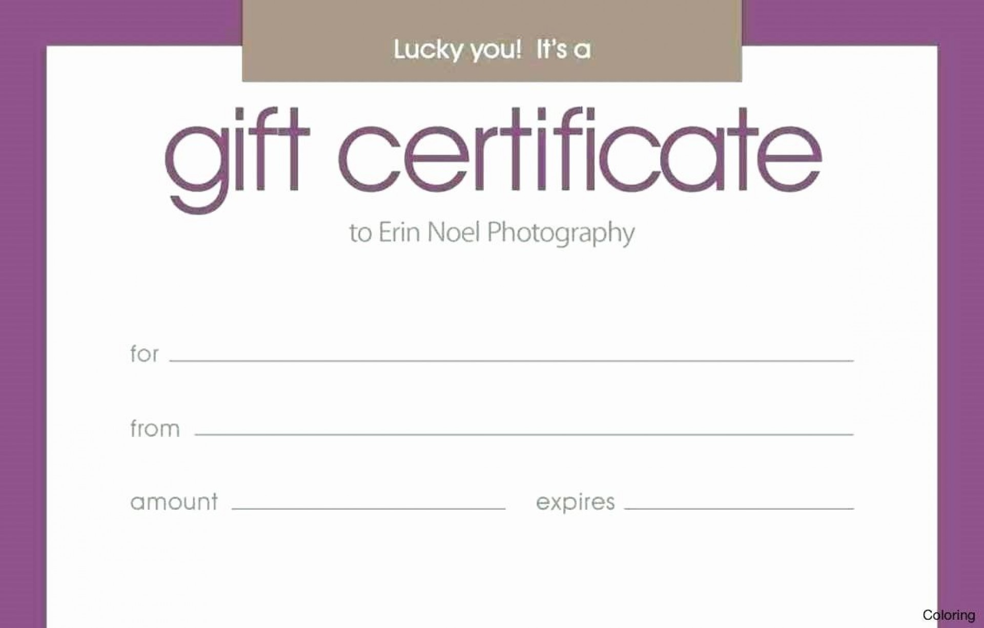 007 Stupendou Free Silent Auction Gift Certificate Template Inspiration 1920