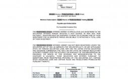 007 Stupendou Private Placement Memorandum Template Free Download Design
