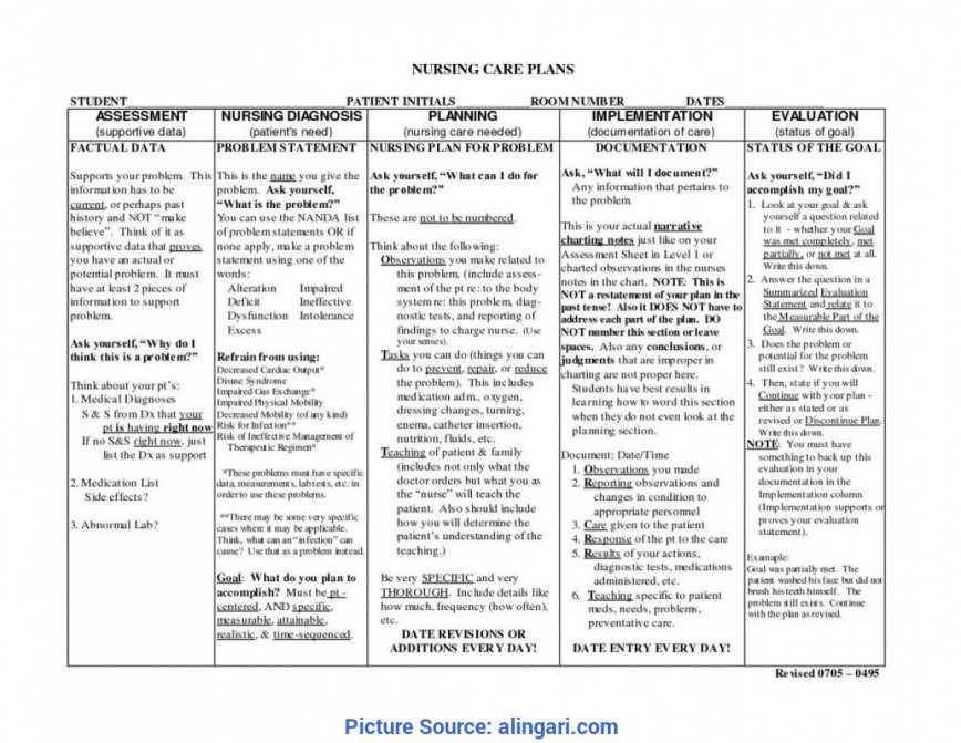 007 Top Nursing Teaching Plan Template Highest Clarity  Sample Care Example Education Lesson