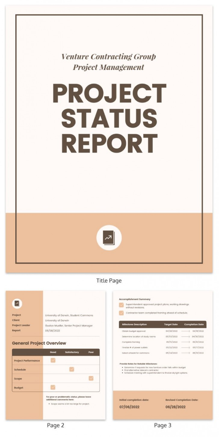 007 Top Project Management Report Template Free High Resolution  Word Weekly Statu Excel728