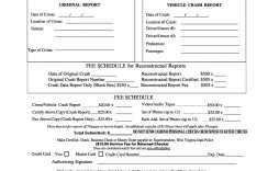 007 Unforgettable Police Report Template Microsoft Word High Definition