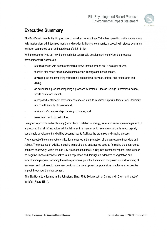 007 Unusual Executive Summary Template Doc Concept  Document Example Google1920