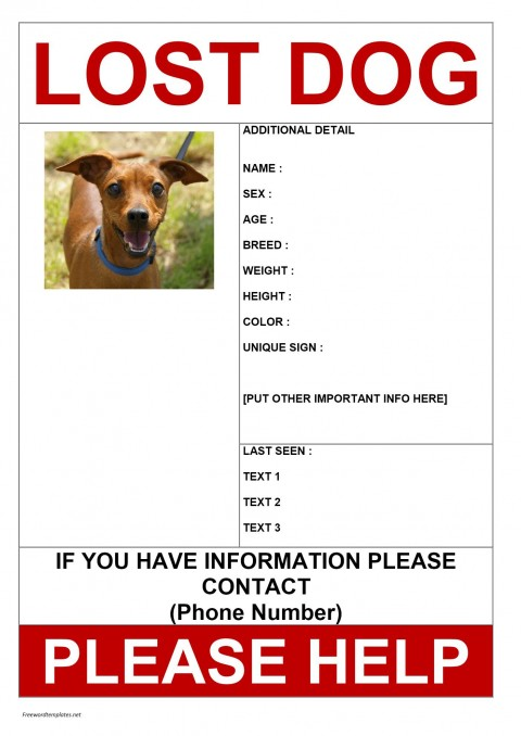 007 Unusual Lost Dog Flyer Template Highest Quality  Free Pet480