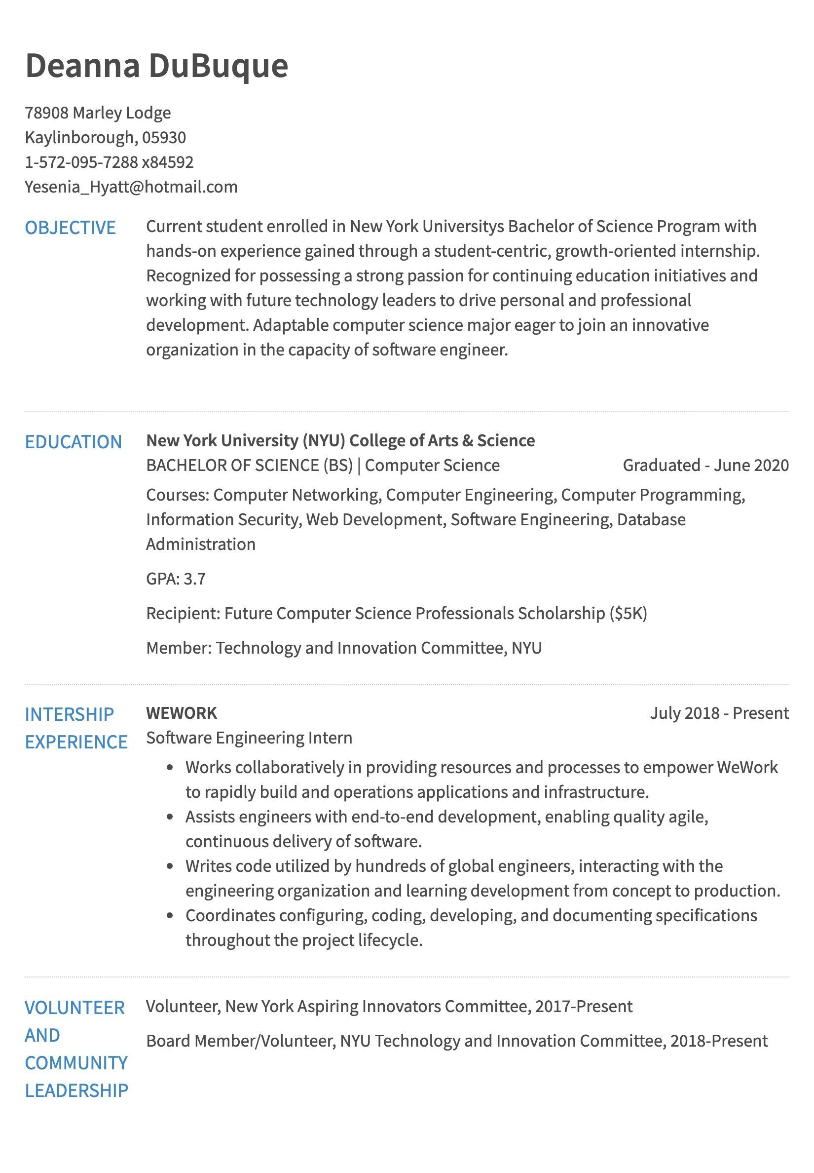Resume Template For Interns Addictionary