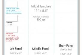 007 Wondrou 3 Fold Brochure Template Concept  For Free