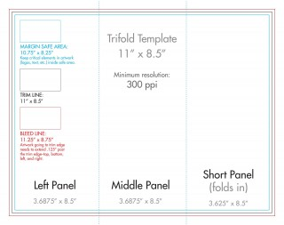 007 Wondrou 3 Fold Brochure Template Concept  For Free320