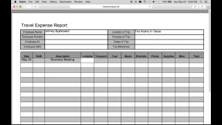007 Wondrou Travel Expense Report Template Sample  Format Excel Free320