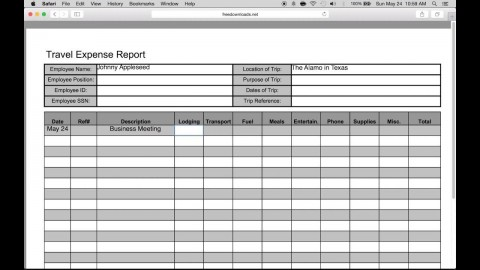 007 Wondrou Travel Expense Report Template Sample  Format Excel Free480