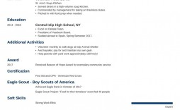008 Awesome Resume Template For Teen Picture  Teens