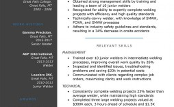 008 Awful Functional Resume Template Free Design