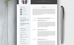 008 Excellent Best Resume Template 2016 Design