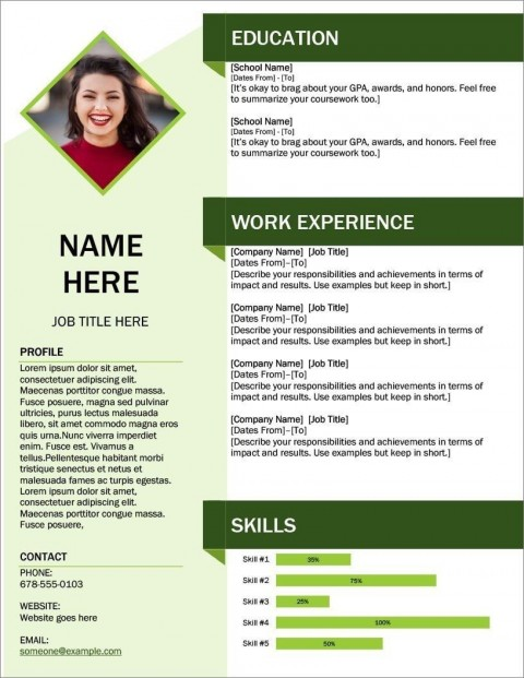 008 Excellent Modern Cv Template Word Free Download 2019 Example 480
