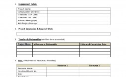 008 Excellent Statement Of Work For Consulting Service Example  Sample