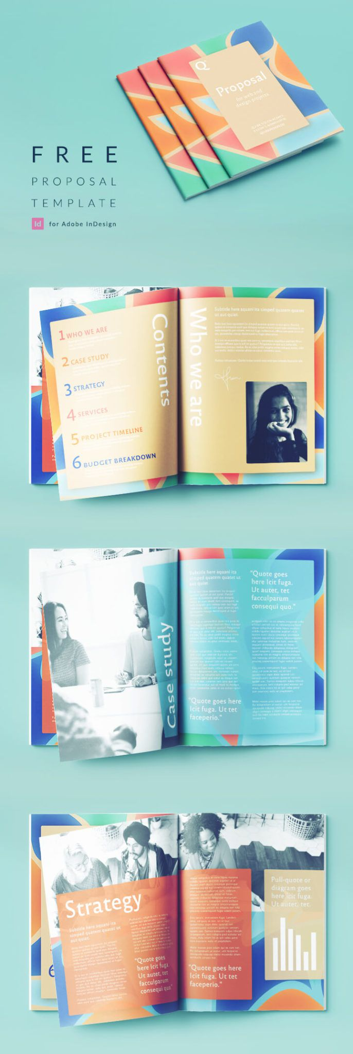 008 Exceptional Free Busines Proposal Template Indesign Concept Full