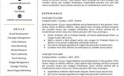008 Fascinating Entry Level Resume Template Google Doc Highest Quality  Docs