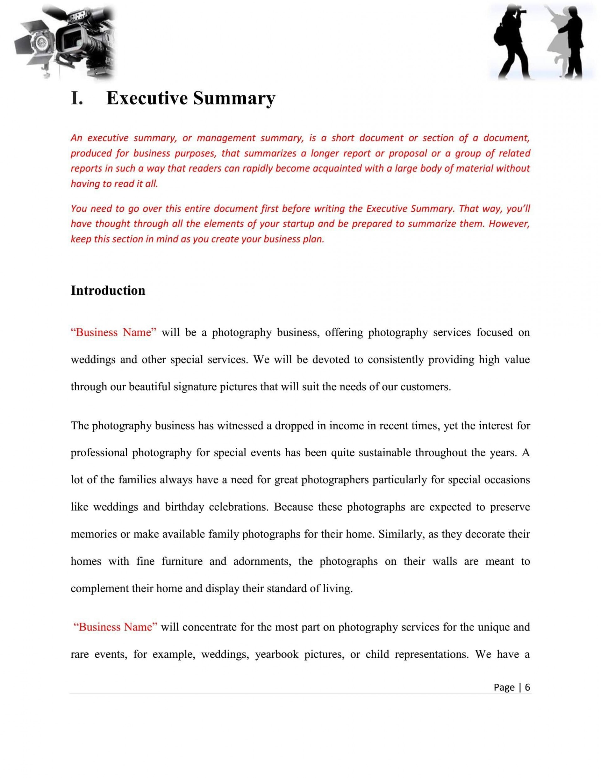 008 Fascinating Photography Busines Plan Template Free Highest Clarity  Sample Doc Download1920