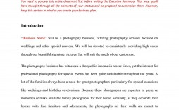 008 Fascinating Photography Busines Plan Template Free Highest Clarity  Sample Doc Download