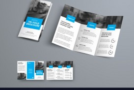 008 Fascinating Three Fold Brochure Template Example  Word Free 3 Psd Download