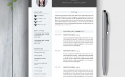 008 Fearsome Best Resume Template 2020 Sample  Top Rated Free Download Reddit