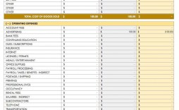008 Fearsome Cash Flow Template Excel High Resolution  2007 Download