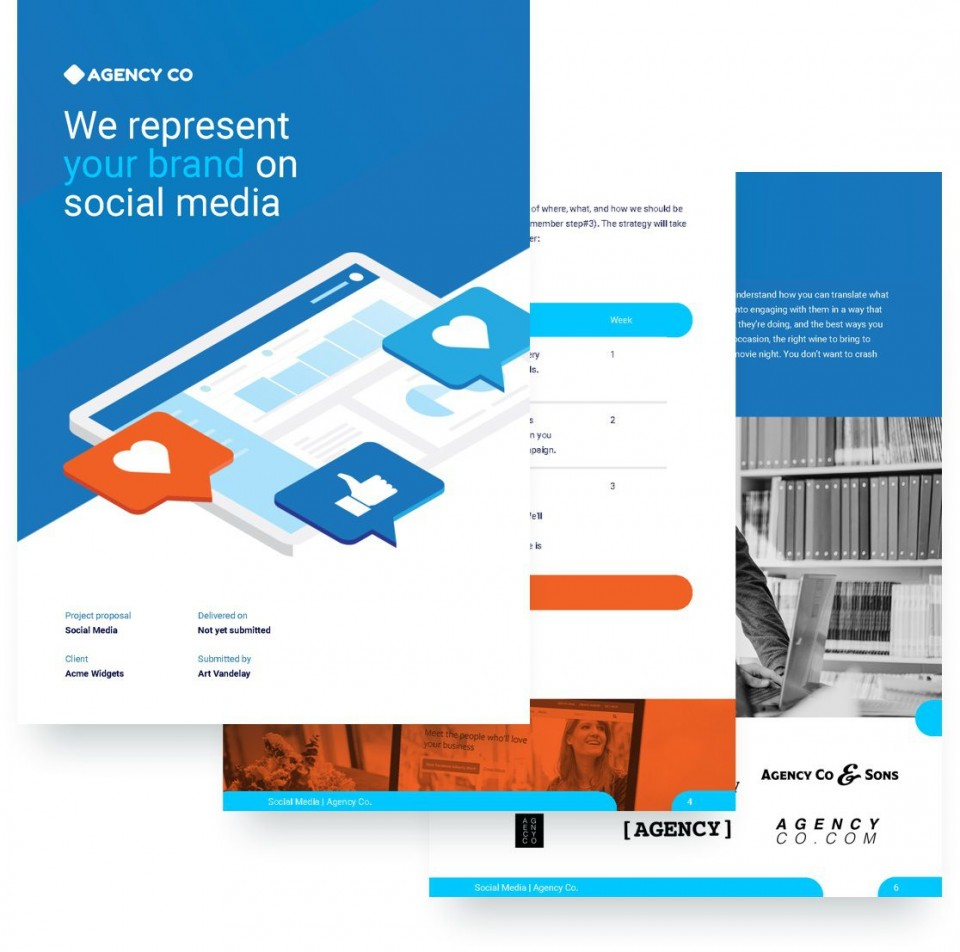 008 Fearsome Social Media Proposal Template High Definition  Plan Sample Pdf 2018960