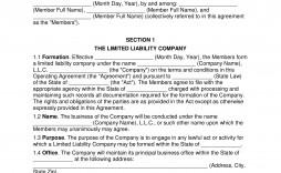 008 Formidable Llc Partnership Agreement Template Photo  Operating Free